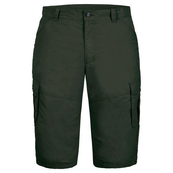 Icepeak EP Ardoch Herren Bermuda Shorts green